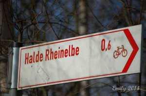 Halde-Rheinelbe-034