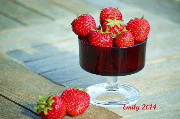 Erdbeeren-004