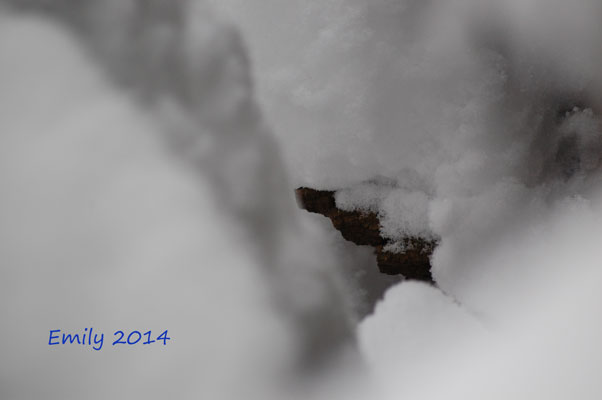 Winter_2014